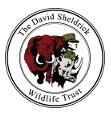 David Sheldrick Wildlife Trust logo