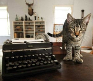 Six-toed cat standing next to Hemingway's typewriter