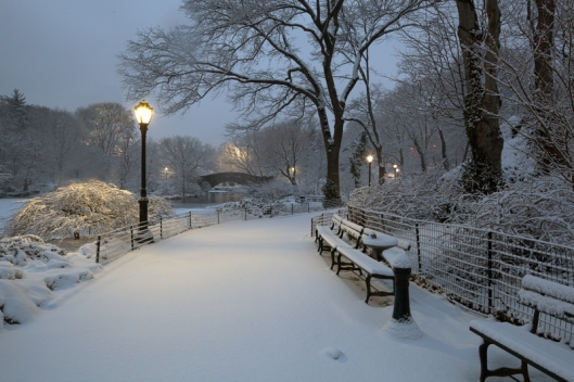 Central Park blanketed with snow