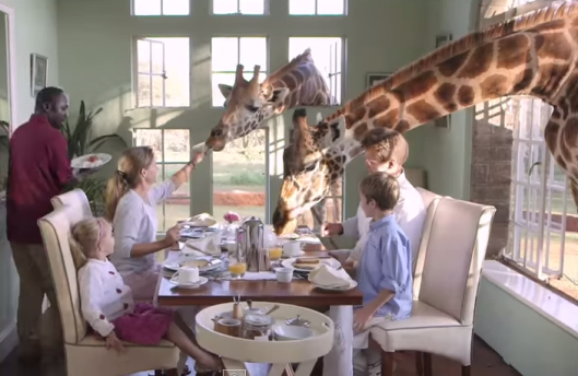 Breakfast with giraffes at Giraffe manor