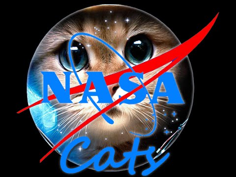 NASA cats logo
