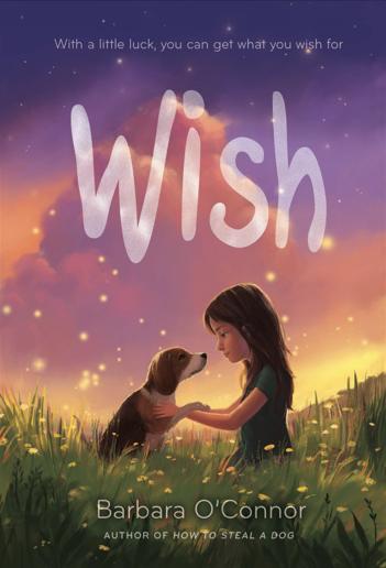 Wish by Barbara O'connor